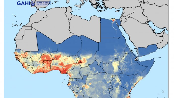GAHI map showing environmental suitability of LF in Africa