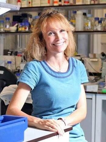 Prof Joanne Webster