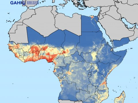 GAHI produced map environment suitability of LF transmission in Africa