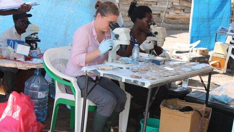 Fiona Allan (centre) checking schistosome egg hatching in Uganda