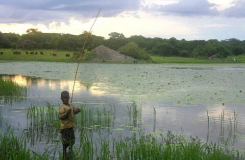 Child fishing in a lake in Montepuez, Mozambique. Credit to Dr Anna E Phillips.
